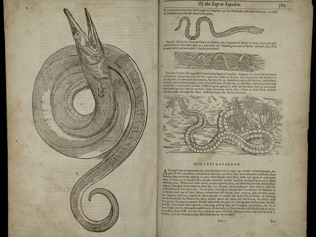 The History of Four-Footed Beasts and Serpents