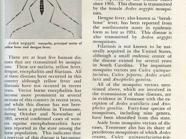 Tennessee Department of Public Health Bulletin, April 1954